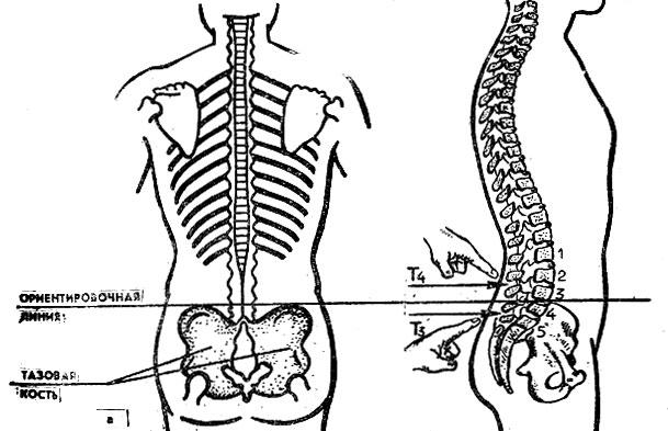 Лечение спины при сильны физических нагрузках