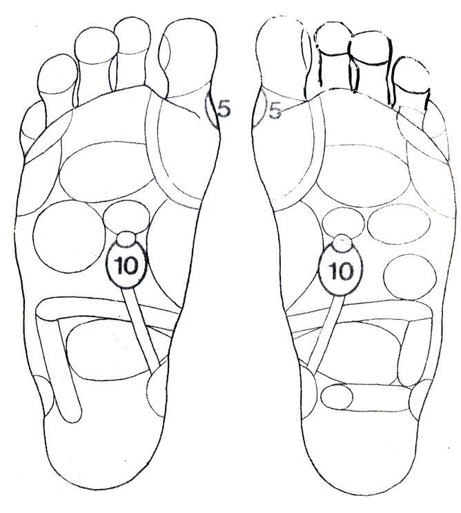 Рефлекторные зоны на стопе: паращитовидные железы (5), почки (10)